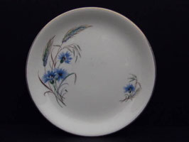 Lot de 5 assiettes anglaises Alfred Meakin / Lot of 5 Alfred Meakin plates