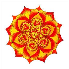 carte fleurs soleil 3 fb