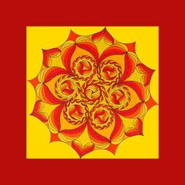 carte fleurs soleil 3