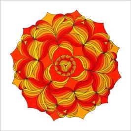 carte fleurs soleil 1 fb