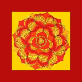 carte fleurs soleil 1