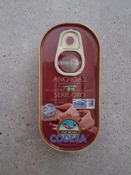 Codessa Oro