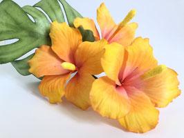 Blumenkurs – Hibiskus für Anfänger 24. Juni