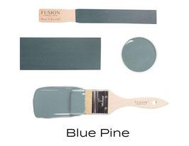NIEUW - Blue Pine