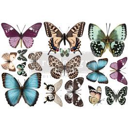 Transfer - Butterfly (purple)