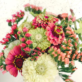 Jora Dahl Wild Bouquets Zinnia Collection
