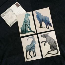 Postkarten Set - 4 Völker Aquarelle