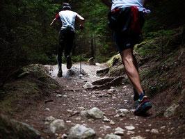 Séance Trail montée/descente