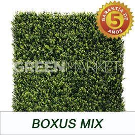 Boxus Mix