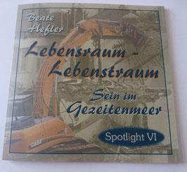 LEBENSRAUM - LEBENSTRAUM * Sein im Gezeitenmeer: Spotlight VI