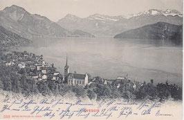 Postkarte Weggis Dorf
