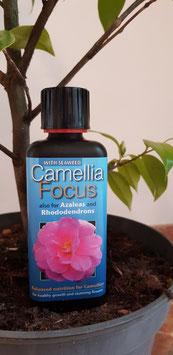 Kamelien Dünger (Camellia Focus) 300 ml