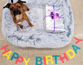 PfotenUniversum Geburtstags Box