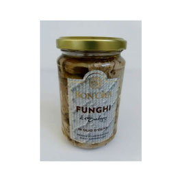 Bon'Ora - Funghi Plerotus trifolati