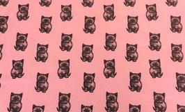 """""""Kitten""""60x40"""
