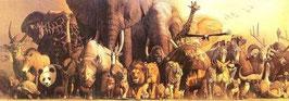 Wild Animal Panorama Poster