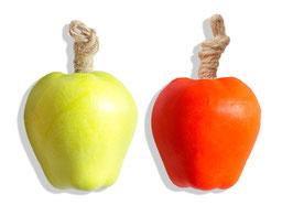 Apfel rot + grün