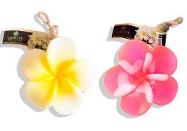 Leelawadee weiß-gelb + pink