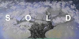 中島千波「樹霊淡墨桜」人気画家 東京芸大名誉教授 風景画 リトグラフ 25号 真作保証