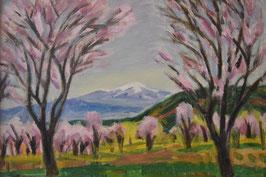 渡辺啓輔 「桜の里」 風景画 油彩 P8号 真作保証 一枚の繪人気画