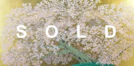 中島千波「阿蘇一心行の櫻」シルクスクリーン 25号 手張り本金箔 真作保証 人気画家 集大成の銘品 最近作 美品!