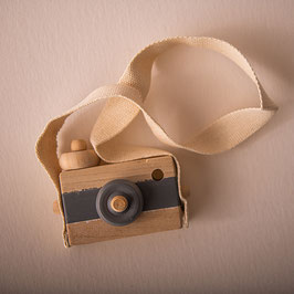 Kamera Holz grau