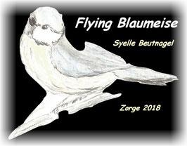 Flying Blaumeise