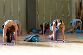 5 Week Balance Yoga Beginners Course - Commencing Thursday 8 April 2021 at 6:00pm
