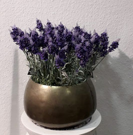 Gefäß mit Lavendel