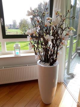 Magnoliaboom by Daan (zonder pot), word op bestelling gemaakt!
