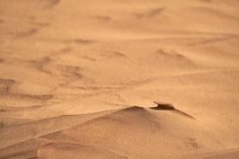 Quadratmeter Sandfläche