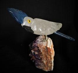 Papagei auf Amethyst