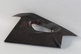 Schwingenschutz APRILIA Sichtcarbon (links und rechts)