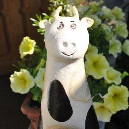 Zaunhocker Kuh
