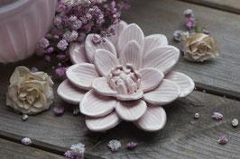 Blume Porzellan