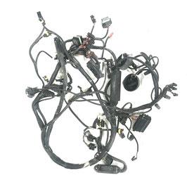 Wiring harness Ducati ST4 ('99)