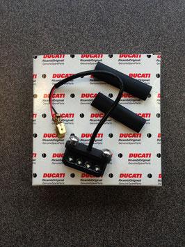 Nummerplaatverlichting Ducati 696