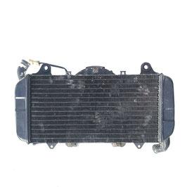 Water radiator Ducati Paso
