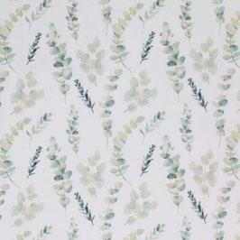 Eukalyptus Futter Jersey