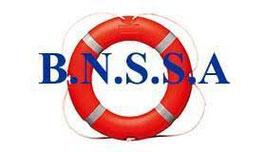 FORMATIONS BNSSA AVEC LIVRE, COURS SUR LA REGLEMENTATION DES PLAGES + PSE.1 + PSE.2