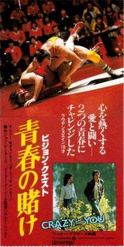 ビジョン・クエスト 青春の賭け(半券・洋画)