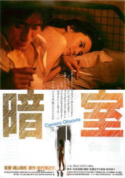 暗室(新宿オスカー劇場/チラシ邦画)