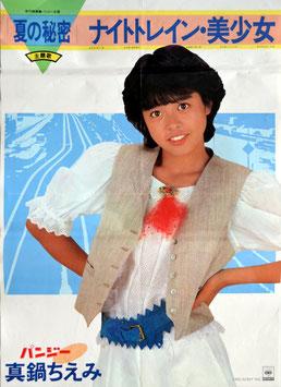 夏の秘密 ナイトレイン・美少女(主題歌CBS/SONYタイアップ版/ポスター邦画)
