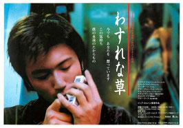 わすれな草(札幌劇場/チラシアジア映画)