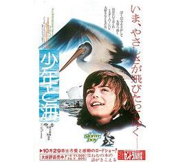 少年と海(洋画チラシ/名駅前セントラル劇場)