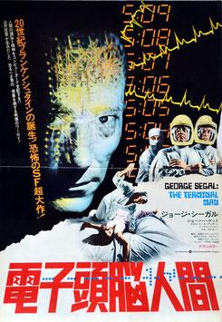 電子頭脳人間(プレスシート洋画)