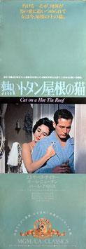 熱いトタン屋根の猫(タテ長/ポスター洋画)