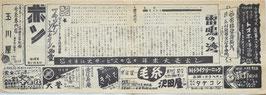 雷鳴の湾/シェーン(蒲田パレス座/チラシ洋画)