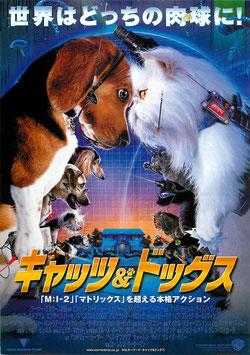 キャッツ&ドッグス(札幌劇場/背景青色・チラシアニメ)