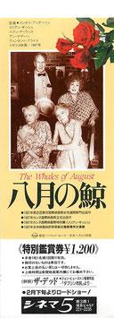 八月の鯨(シネマ5/未使用映画前売券)